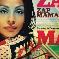 Zap Mama - Ancestry In Progress