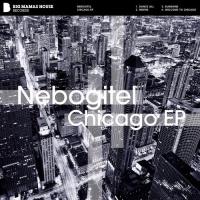 Welcome To Chicago (Original Mix)