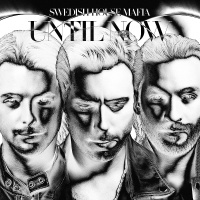Swedish House Mafia - Euphoria (Swedish House Mafia Extended Dub)