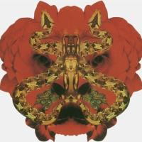 Santana - Festival (Album)