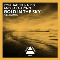 A.R.D.I. - Gold In The Sky (Signum Mix) (Single)