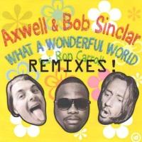 What A Wonderful World (Radio Edit)