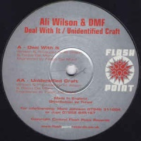 Ali Wilson - Unidentified Craft (Single)