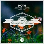 Moth (Anton Ishutin Remix)