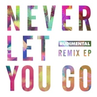 - Never Let You Go (Remixes)
