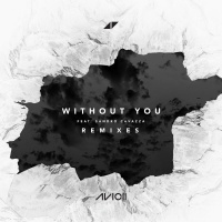 Avicii - Without You (Adans Remix)