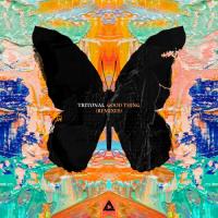 Good Thing (Vigel Remix)