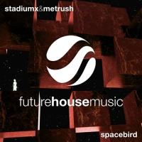 Stadiumx - Spacebird