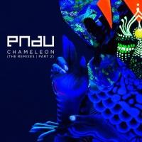 Chameleon (Blonde Remix)