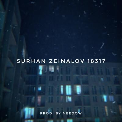 Surhan Zeinalov - 18317