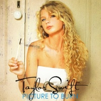 Taylor Swift - Picture To Burn (Single)