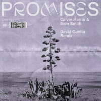 Calvin Harris - Promises (David Guetta Remix)