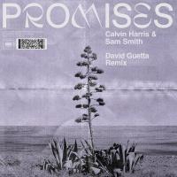 - Promises (David Guetta Remix)