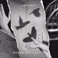 Вельвеt - Птицы-Канарейки (Single)