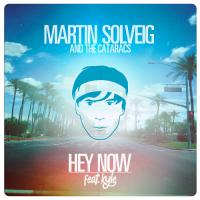 Hey Now (Single Mix)